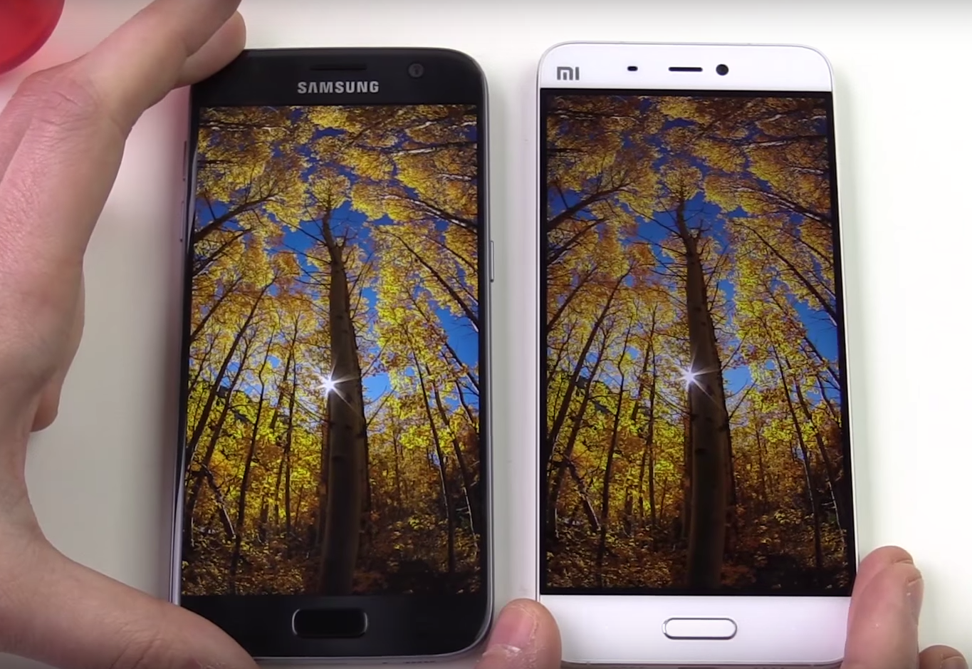 Xiaomi Mi 5 vs. Samsung Galaxy S7 devices lying on the white table, showing the same image with trees on both displays.