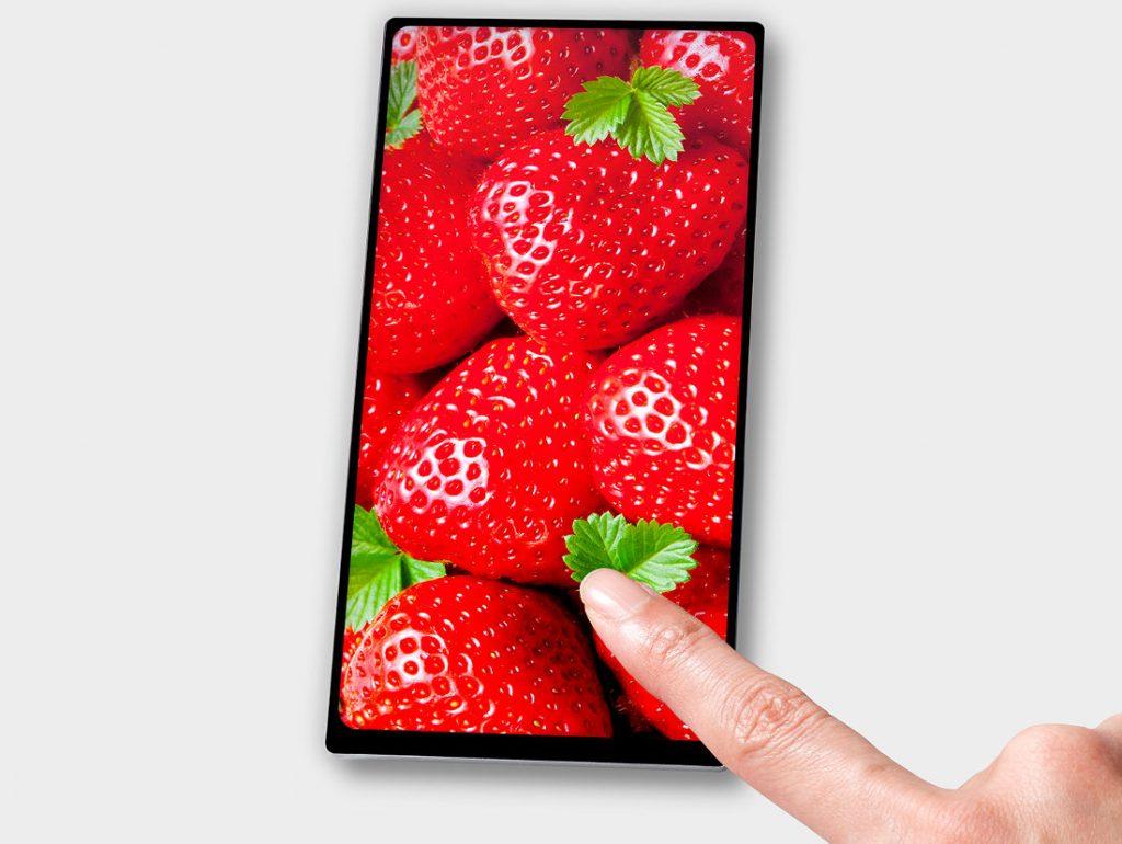 Xiaomi Chiron 6-inch JDI Display