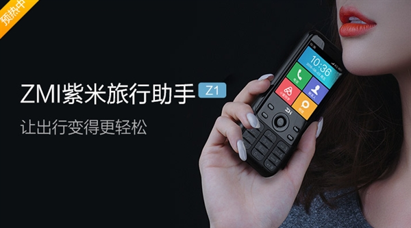Functions of the ZMI Travel Assistant Z1