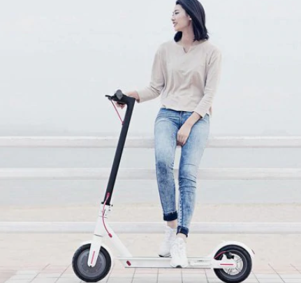 Xiaomi 365 Folding Electric Scooter