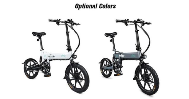 FIIDO D2 Electric Bike