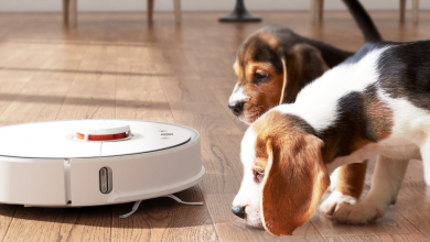Xiaomi Roborock S5, Awesome Robotic Cleaner On Sale For €267.5 During Double 11