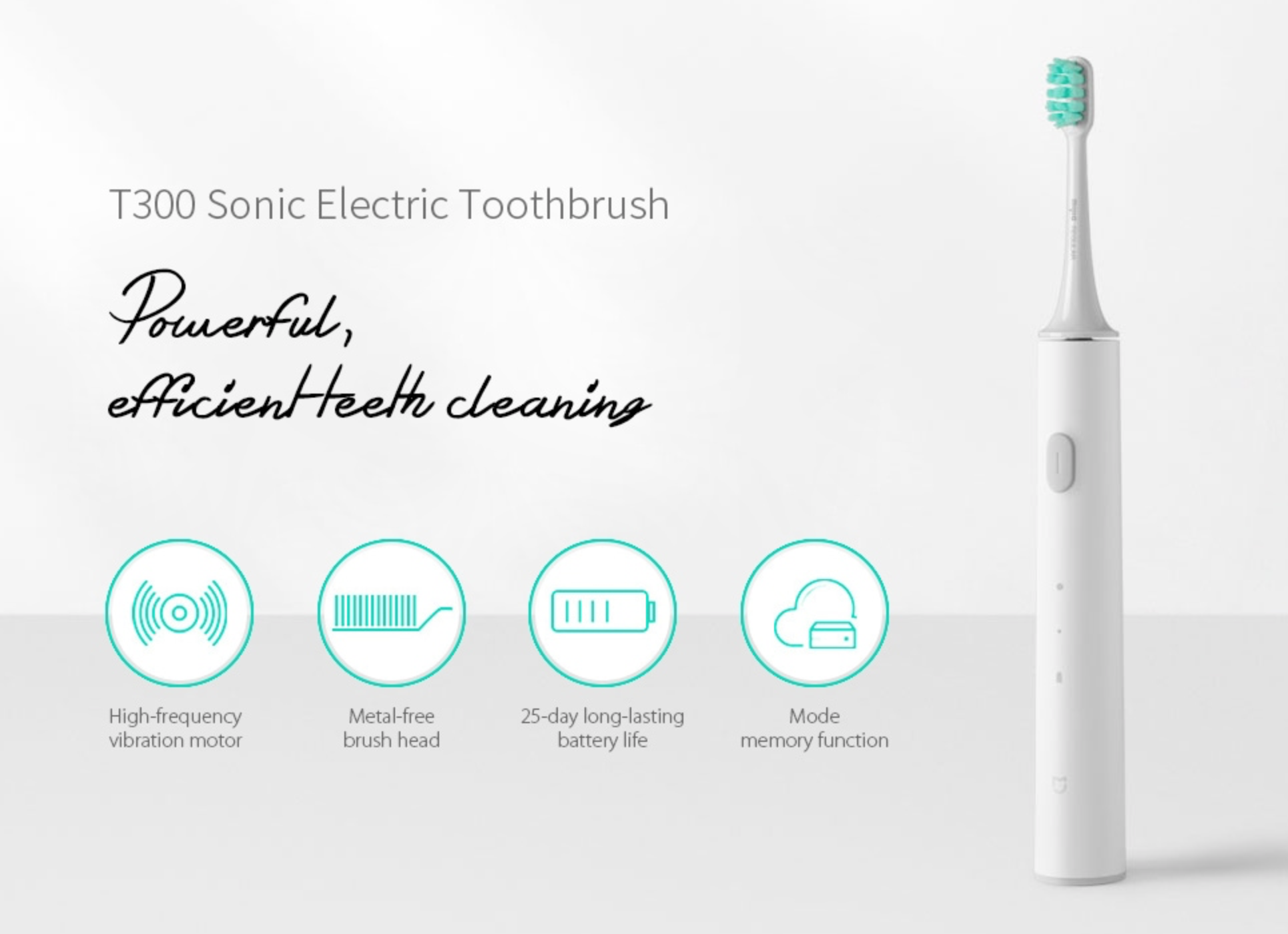 Xiaomi electric toothbrush T300